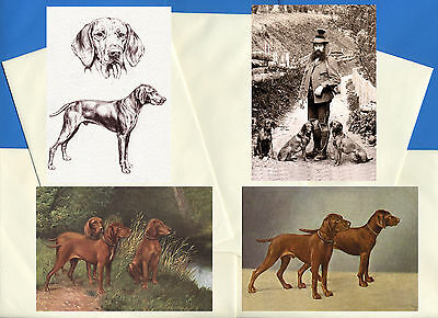 Hugarian Vizsla Pack Of 4 Vintage Style Dog Print Greetings Note Cards