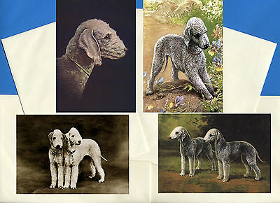 Bedlington Terrier Pack Of 4 Vintage Style Dog Print Greetings Note Cards
