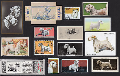 15 Sealyham Terrier Collectable Dog Cigarette Breed / Trade Cards And Stamps