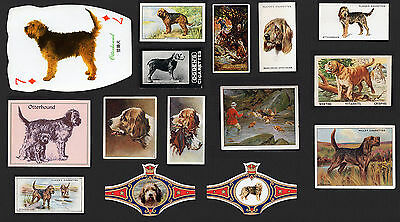 15  Original Vintage Otterhound Collectable Dog Cigarette Trade Cards And Bands