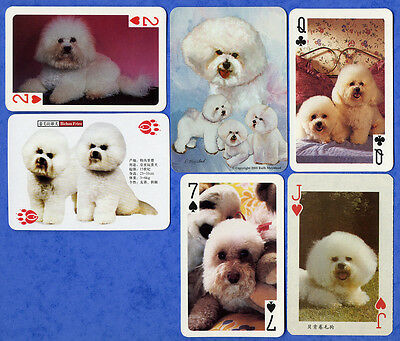 Bichon Frise Dog Selection Dog Playing Swap Single Cards Great Gift When framed