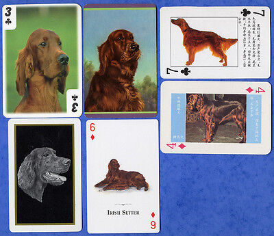 Irish Setter Dog Playing Swap Single Cards Great Gift When Framed