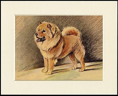 Chow Chow Charming Little Dog Print Mounted Ready To Frame