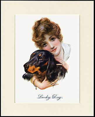 Gordon Setter Pretty Girl And Dog Charming Print Mounted Ready To Frame