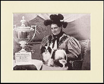 Japanese Chin Lady Her Winning Dog Great Sepia Dog Print Mounted Ready To Frame