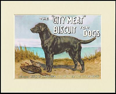 Labrador Retriever Great Dog Food Advert Print Mounted Ready To Frame