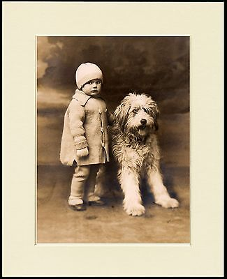 Old English Sheepdog Little Girl Little Dog Print Mounted Ready To Frame