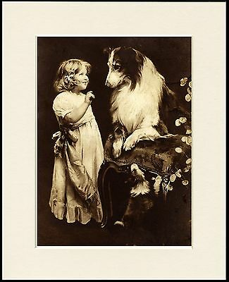 Rough Collie And Little Girl Charming Little Dog Print Mounted Ready To Frame