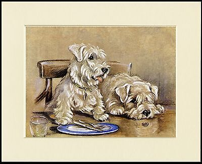 Sealyham Terrier Two Dogs Sat At Table Charming Dog Print Mounted Ready To Frame