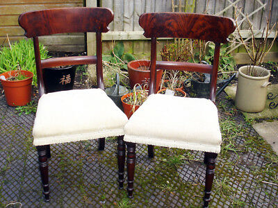 Pair of solid mahogany side chairs, William IV - new webbing upholstered.