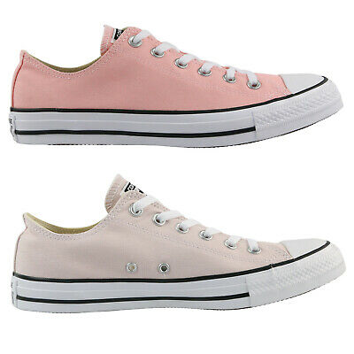 Converse Chuck Taylor  All Star Seasonal Ox Schuhe Sneaker Unisex