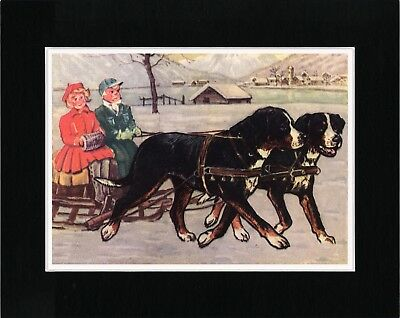 Bernese Mountain Dogs Pulling Sleigh Lovely Dog Art Print Matted Ready To Frame