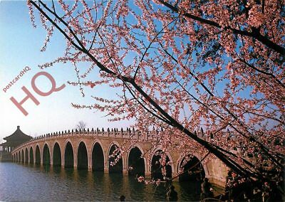 Picture Postcard:-China, Seventeen-Arch Bridge / The Summer Palace