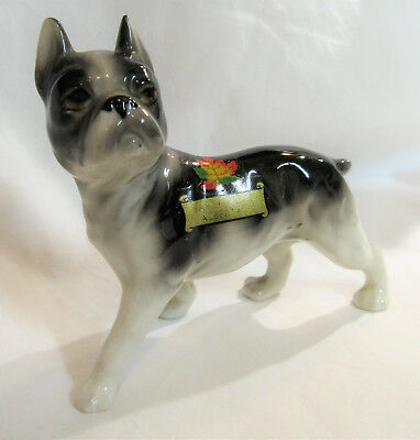 BOSTON TERRIER Canada Souvenir Porcelain Figurine