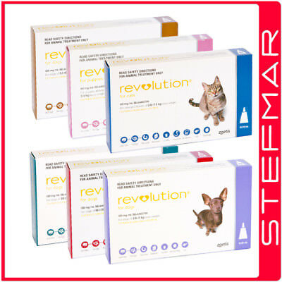 Revolution for Cats 6Packs Flea Heartworm Stomach Worming