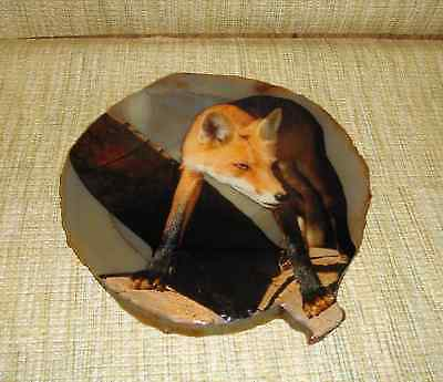 """Agate Red Fox Picture on Flat Stone 7"""" x 6 3/4"""""""