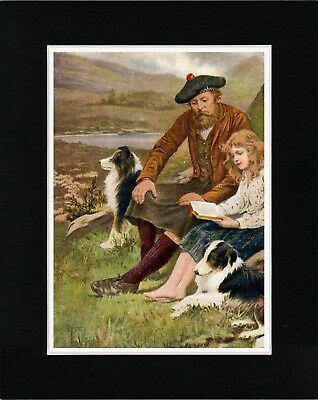 Shepherd Daughter And Border Collie Dogs Lovely Old Style Dog Print Ready Matted