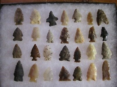 Bird Point Arrowhead Collection