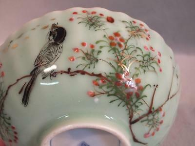 Antique Chinese Famille Rose Celadon Ribbed Bowl - Bird In Trees - Signed