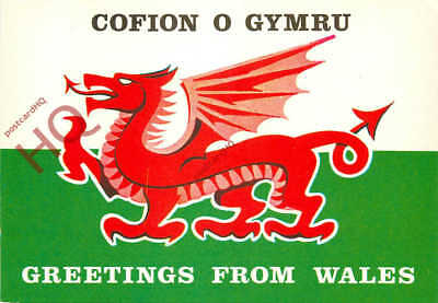 Postcard wales pwllheli greetings 293 picclick uk picture postcard greetings from wales welsh dragon flag salmon m4hsunfo Images
