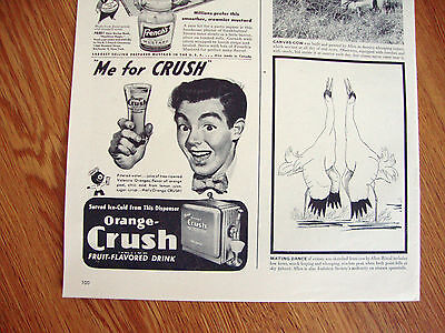1947 Orange Crush Soda Ad   Me for Crush