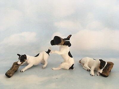 Trio of  Northlight Jack Russell Terriers