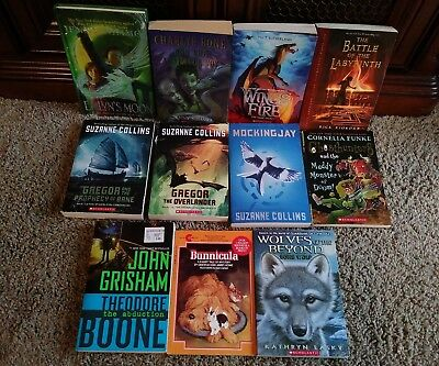 Lot of 11 Teen Young Adult Books Gregor the Overlander WINGS OF FIRE Nimmo FUNKE