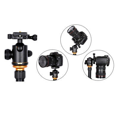 Tripod Ball Head mini Ballhead with Quick Release Plate For Camera Tripod PB4