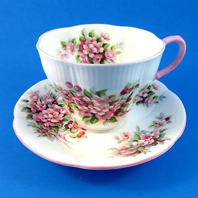 Royal Albert Blossom Time Series Apple Blossom Tea Cup and Saucer Set