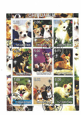 mini stamp sheet  - dog - CHIHUAHUA - Cinderella