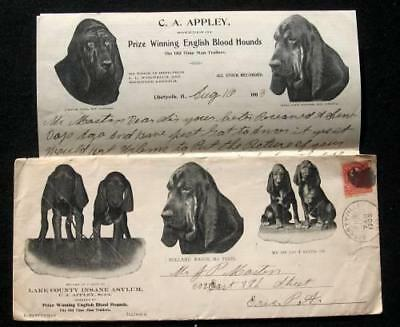 1903 Letterheads and Envelope - English Blood Hounds