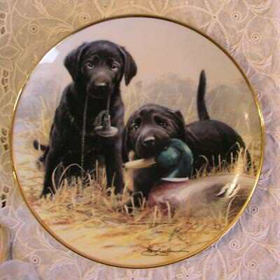 Beginner's Luck 1991 Black Lab Puppies Limited Edition Plate James Killen I9856