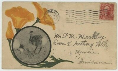 Mr Fancy Cancel 2c ILLUSTRATED AD COVER OSTRICH FARM PASADENA CAL LOS ANGELES 03
