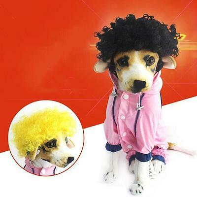 Pet Costume Wig for Dog Cat Halloween Clothes Festival Fancy Dress up 2016