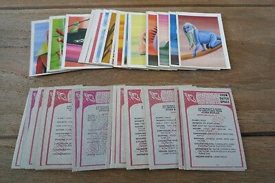 Chix Krazy Kreatures Cards From 1968 - VGC! - Pick & Choose The Cards You Need!
