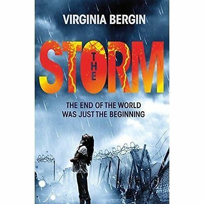 The Storm by Virginia Bergin (Paperback)