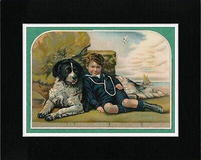 Small Boy And Newfoundland Dog Lovely Vintage Style Image Art Print Ready Matted
