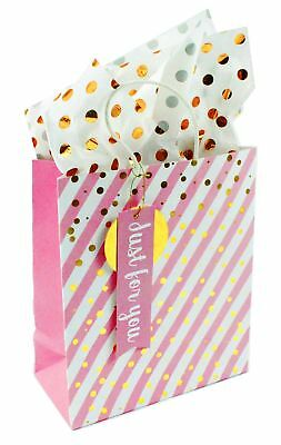 Pink Striped Gold Foil Gift Bag Tissue Paper Set For Ladies Girls Wrapping Her