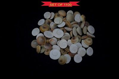 Gomti Chakra Natural Untreated Lucky Gemstones Of Gomati River - 1100 Pieces