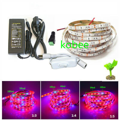 5050 LED Grow Lights  LED Strip Plant Growth Light with Power Adapter and Switch
