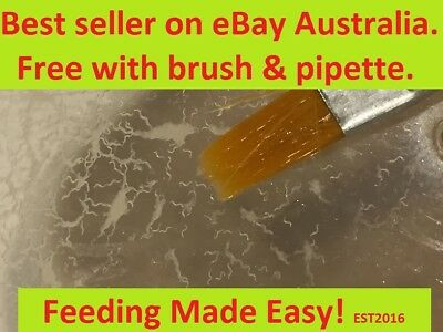 The best and fine dust fry shrimp fish food in Australia