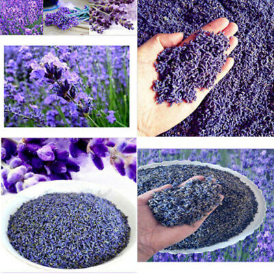 Real Lavender Dry Organic Dried Flower Sachets Bud Bloom Bag Scent Fragrance