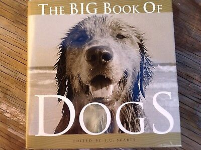 Big Book Of Dogs Hb Photographs Collectible Coffee Table Animal Lover