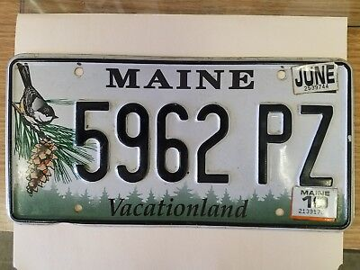 MAINE license plate Vacationland  chickadee pinecone 2010 preowned