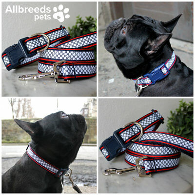 Allbreeds Chain Print Dog Collar and Lead Set Greyhound Puppy French Bulldog Pug