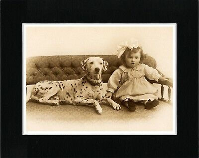 Little Girl And Dalmatian Lovely Vintage Style Dog Photo Print Ready Matted