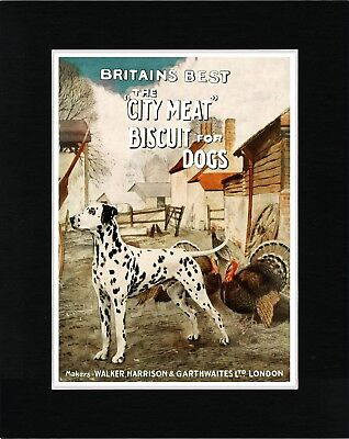 Dalmatian On Vintage Style Dog Food Advert Art Print Ready Matted
