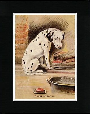 Dalmatian Dog About To Have A Bath Vintage Style Dog Art Print Ready Matted