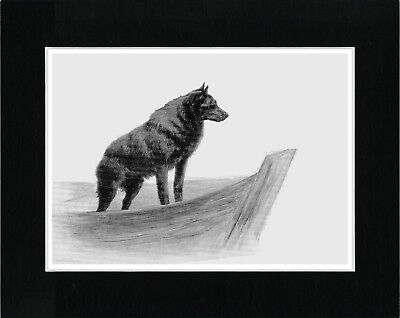 Schipperke On A Boat Lovely Vintage Style Dog Art Print Matted Ready To Frame