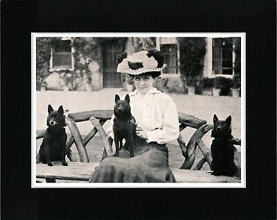 Schipperke Lady And Her Dogs Vintage Style Dog Photo Print Matted Ready To Frame